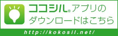 kokosil.net